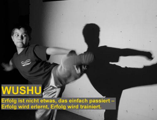Kinder Kung-Fu (Einsteigerkurs)
